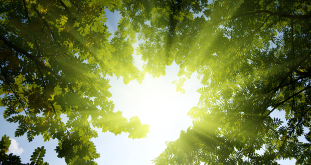 Fixing vitamin D, depression aids the heart: studies