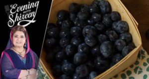 Blueberries in Snow Recipe by Chef Shireen Anwar
