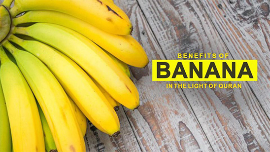 Benefits of bananas in the Light of Quran
