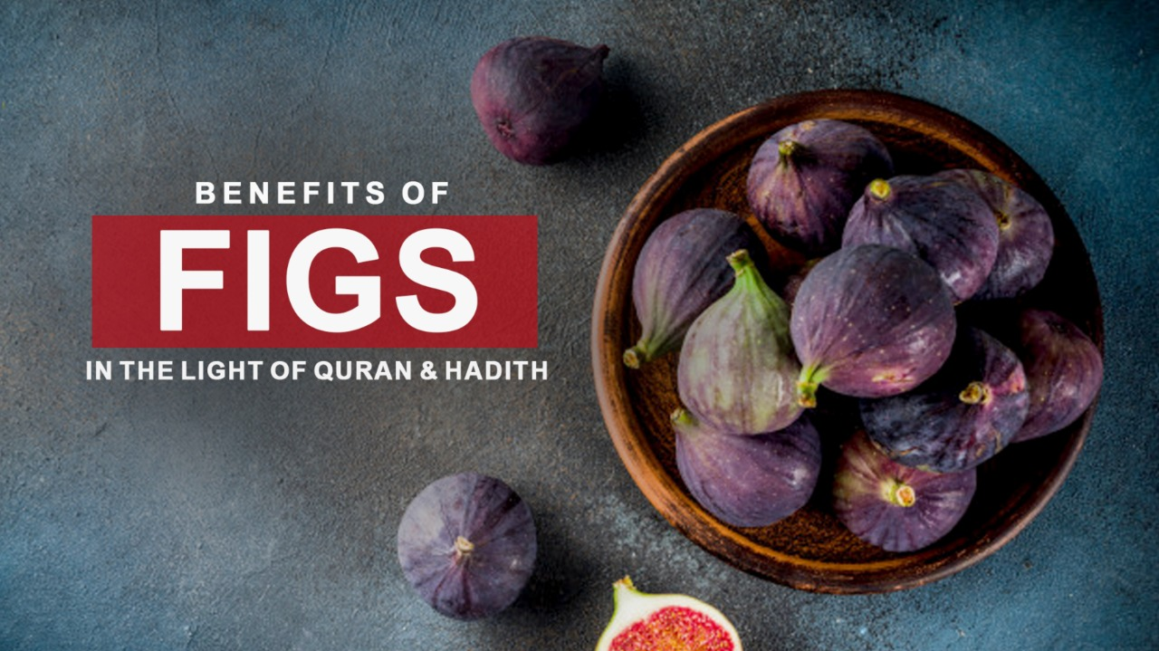 """The Prophet Muhammad (SAWW) said: """"Eat figs! If I would say a certain type of fruit was sent down to us from the heavens I would say it's a fig because it has no seeds."""