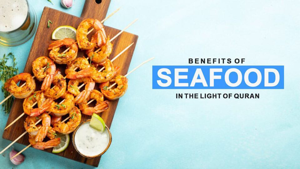 Benefits of Seafood in the Light of Quran