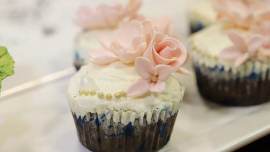 Chocolate Cupcakes Recipe   Masala Mornings