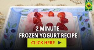 2 Minute Frozen Yogurt Recipe | Totkay